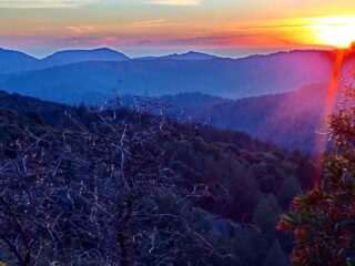 Pic from @mujtabagmujtabag Sunset @castlerock_sp looking towards #bigbasinstatepark and the Pacific #castlerockstatepark #CAstateparks #santacruzmountains #sunset #sunsetphotography #mistymountains #california #toyon #ohlone #ohloneland #muwekmaterritory #amahmutsun #portolaandcastlerockfoundation