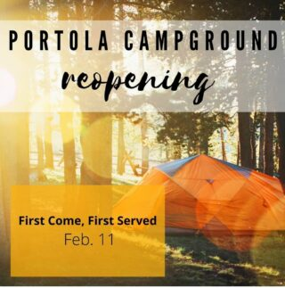 #CAstateparks #santacruzmountains #californiacamping #carcamping #bayarea #bayareacamping #redwoodforest #portolaandcastlerockfoundation