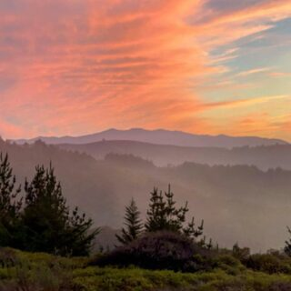 Pic from @technologyhiker Sunset in the #santacruzmountains #california #sunsetphotography #sunset #mistymountains #paintedSky #portolaandcastlerockfoundation