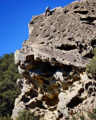 #GoatRock #climbing #bayareaclimbing #bayarearocks #CAstateparks #santacruzmountains #castlerockstatepark #california #portolaandcastlerockfoundation