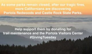 Link in bio #castateparks #castlerockstatepark #portolaredwoodsstatepark #portolaredwoods #santacruzmountains #portolaandcastlerockfoundation #czulightningcomplex #2020